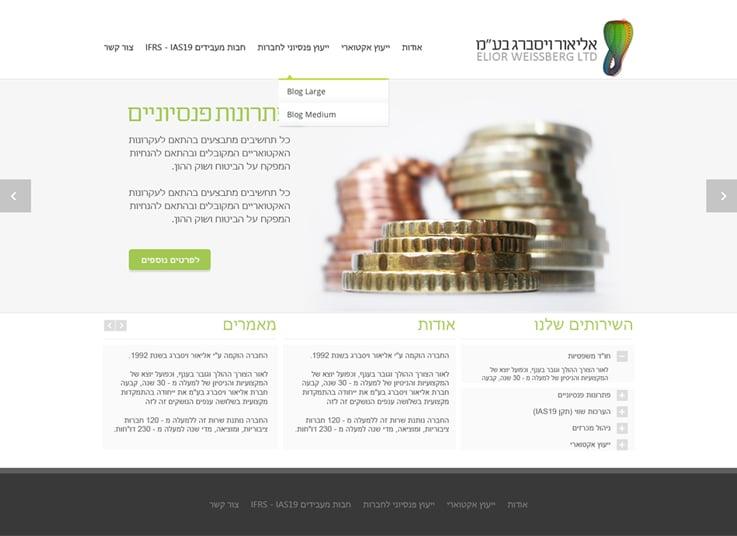 עיצוב ופיתוח אתר